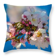 Bee On Blossom Throw Pillow