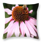 Bee On Coneflower Throw Pillow