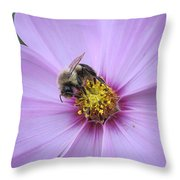 Bee On Cosmos Throw Pillow