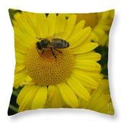 Bee On Daisy Throw Pillow