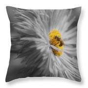 Bee On Daisy Flower Throw Pillow
