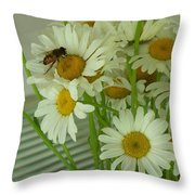 Honey Bee On Daisy Print Photo For Sale Throw Pillow