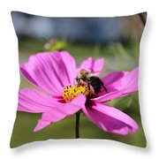 Bee On Flower Throw Pillow