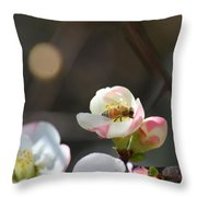 Bee On Japanese Quince Throw Pillow