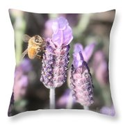 Bee On Lavender Square Throw Pillow