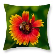 Bee On Orange Flower Throw Pillow