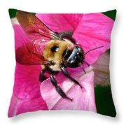 Bee On Petunia Throw Pillow