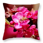 Bee On Pink Blossoms 031015ab Throw Pillow