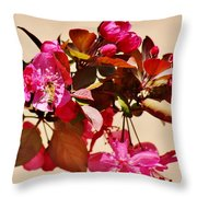 Bee On Pink Blossoms 031015ac Throw Pillow