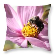 Bee On Pink Cosmos Throw Pillow
