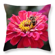 Bee On Pink Flower Throw Pillow