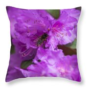 Bee On Rhododendrons Throw Pillow