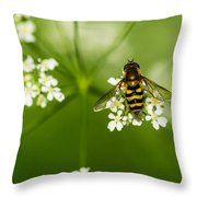 Bee On Top Of The Flower - Featured 3 Throw Pillow