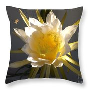 Bee Pollinating Dragon Fruit Blossom Throw Pillow
