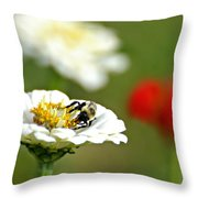 Bee Red-y Throw Pillow
