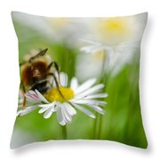 Bee The Daisy Throw Pillow