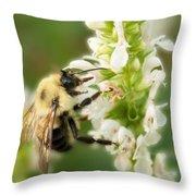 'bee'autiful Morning Throw Pillow