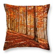 Beech Forest Throw Pillow