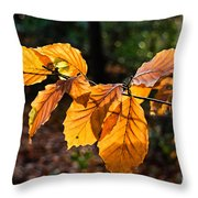 Beech Leaves In Winter Throw Pillow