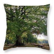Beech Tree Britain Throw Pillow