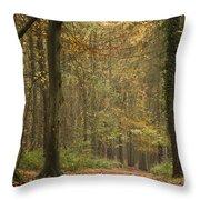 Beech Wood Walk Throw Pillow