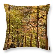 Beeches Throw Pillow