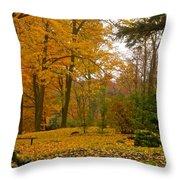 Beechwood Cemeter Throw Pillow