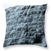 Beed's Lake Dam Throw Pillow