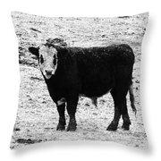 Beef Bandit Throw Pillow