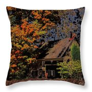Beehive House 2 Throw Pillow