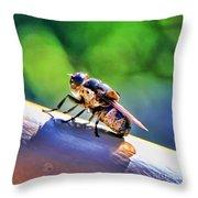 Beeing Nice By Diana Sainz Throw Pillow