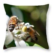 Bee's Throw Pillow