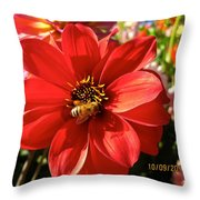 Bee's Dahlia Delight Throw Pillow