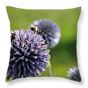 Bees On Globes Throw Pillow