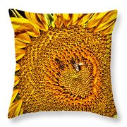 Bees On Sunflower Hdr Throw Pillow