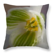 Bee's View Of A Snowdrop Throw Pillow