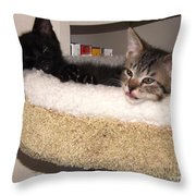 Beethoven Symphony At Rest Throw Pillow