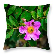 Beetle And Fly On Wild Rose Throw Pillow