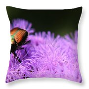 Beetle On A Flower Throw Pillow