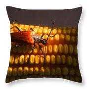 Beetle On Corn Ear Throw Pillow