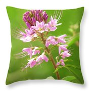 Beeweed . . .with Ant Throw Pillow by  Feva  Fotos