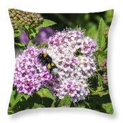 Beezzzz Throw Pillow