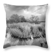 Before The Big Storm Mono Throw Pillow