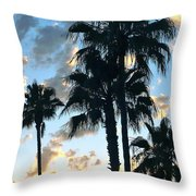 Before The Dusk Throw Pillow