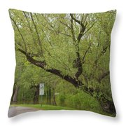 Before The Fall Throw Pillow