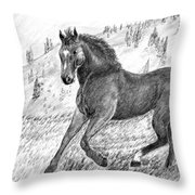 Before The West Was Won Throw Pillow