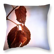 Before We Fall Throw Pillow