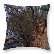 Beg Your Pardon Throw Pillow