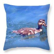 Beginner...   # Throw Pillow