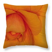 Begonia 3 Throw Pillow